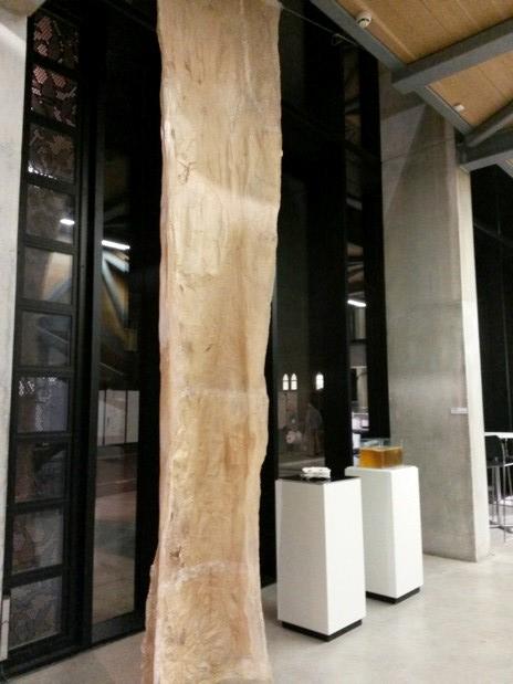 kombucha gallery