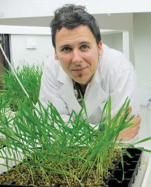 Dr Fran-Lopez Ruiz, leader of The Fungicide Resistance Group and